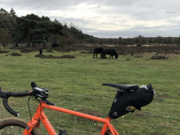 Apidura racing saddle pack on bicycle